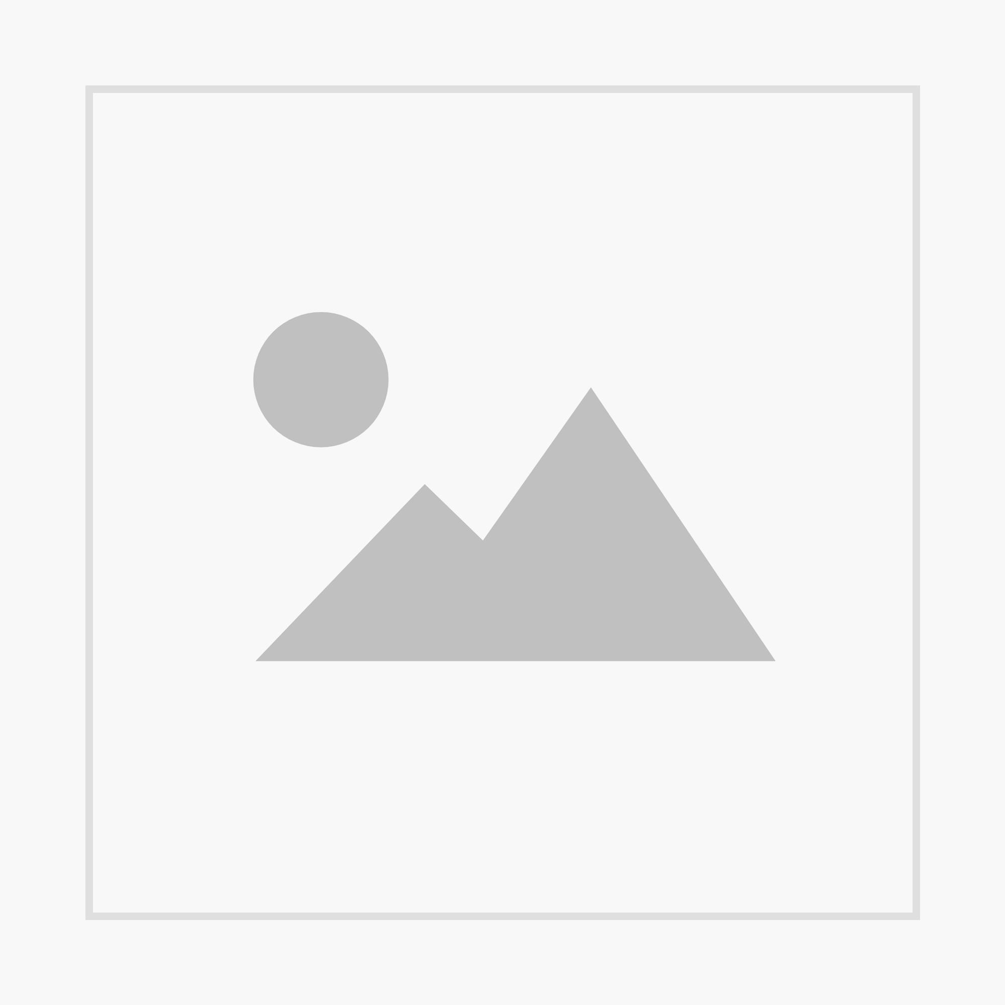 Landlust - Sonderheft  Naturrezepte 2019