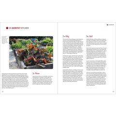 Die neuen Gemüsegärten